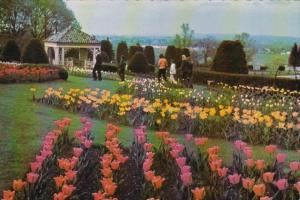 Pennsylvania Hershey Gazebo and Tulips In Hershey Gardens