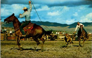 Cowboys on Horse Calf Roping Postcard unused 1960s