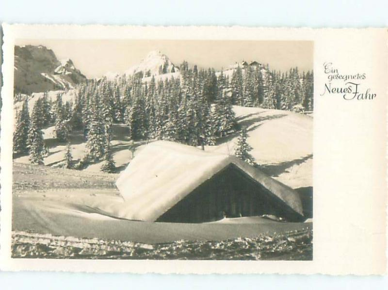 Old rppc NATURE SCENE Great Postcard AB0522