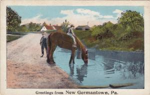 Boys with horse drinking water out of pond, Greetings from NEW GERMANTOWN, Pe...