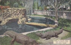 Texas El Paso Alligator Pool San Jacinta Plaza
