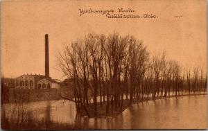 Chillicothe Ohio~Yoctangee Park~Water Works~Reservoir~1910 CU Williams Brownette