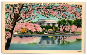 Mid-1900s Lincoln Memorial through the Cherry Blossoms, Washington, DC Postcard