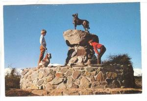 TEKAPO- Bronze Monument, A Tribute To Sheperd Dogs In The District, Canterbur...