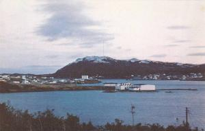 St. Anthony Harbour, Sold In Aid Of Senior Citizen's Home, St. Anthony, Newfo...
