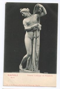 Napoli Museo Venere Callipige di Prassitele Statue Venus UDB