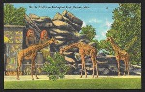 Giraffe Exhibit Zoological Park Detroit Michigan Unused c1940s