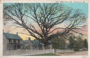 WYE MILLS, Maryland, PU-1935; The Great Wye Oak