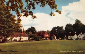Swan Green, New Forest, England, Cameracolour Postcard, Unused
