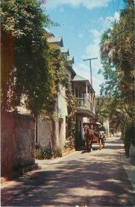 St Augustine Florida~Aviles Street~Horse Drawn Surrey~1950-70s Chrome Postcard