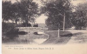 NIAGARA FALLS, New York; Rustic Bridge to Willow Island, 00-10s