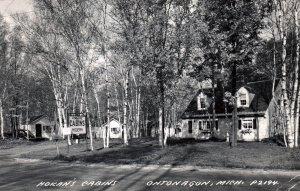 Hokan's Cabins,Ontonagon,MI BIN