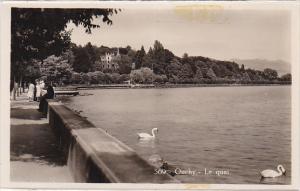 RP, Swans, Le Quai, OUCHY (Lausanne), Switzerland, 1920-1940s