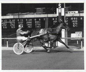 SPORTSMAN'S PARK Harness Horse Race , MISTY MISTY winner, 1979