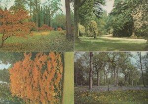 Westonbirt Arboretum 4x Beautiful Gloucester Postcard s