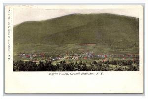 13975  Aerial view of Hunter Village Catskill Mtns. NY