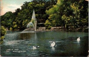 Lake at Zoo-Fountain-Ducks-Swan in Water-Wilmington-Delaware-Vintage Postcard