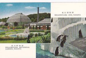 2-Views, Higashiyama Botanical Garden, Higashiyama Zoo- Penguins, Nagoya, Jap...