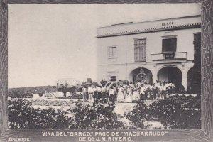 Vina del BARCO Pago de Macharbudo de Dn J.M.Rivero , Spain , 00-10s