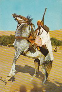 Algeria The Fascinating South A Cavalier
