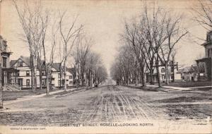 ROSELLE NEW JERSEY~CHESTNUT STREET LOOKING NORTH~REWALT'S  PHOTO POSTCARD 1908