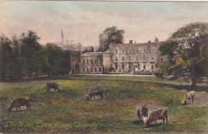TORQUAY, Devon, England, 1900-1910´s; Torre Abby