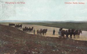 Ploughing the West , Canadian Pacific Railway , 1907