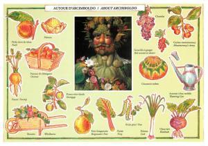 Vertumnus with Vegetables and Fruits Giuseppe Arcimboldo Art Postcard