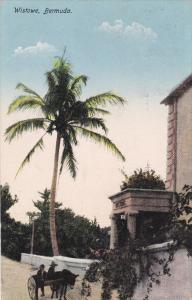 Burro Cart, WISTOWE, Bermuda, 00-10's