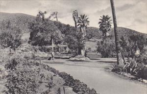 Grounds At Paraiso Hot Springs California Albertype