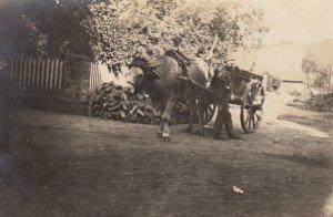 RP: Ox Cart , 00-10s