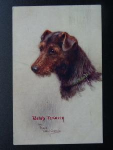 WELSH TERRIER Sketches of Doggies c1920s Postcard by Raphael Tuck 8837