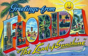 [ Linen ] US Florida - Greetings From Florida