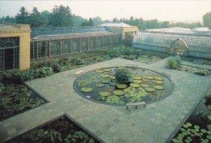 Longwood Gardens Waterlily Display Kennett Square Pennsylvania