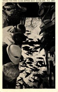 Florida Silver Springs Seeing Fish Thru Glass Bottom Boat
