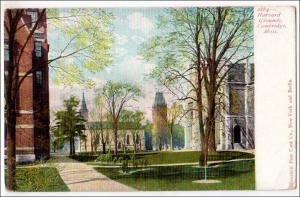 Harvard Grounds, Cambridge MA