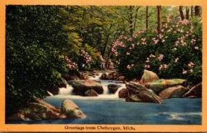 Michigan Greetings From Cheboygan 1941