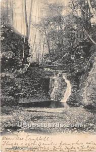 Bushes Glen Cochecton NY 1906