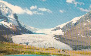 Canada Alberta Jasper The Columbia Icefields