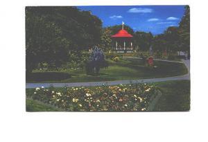 Flowers, Public Gardens, Halifax, Nova Scotia,