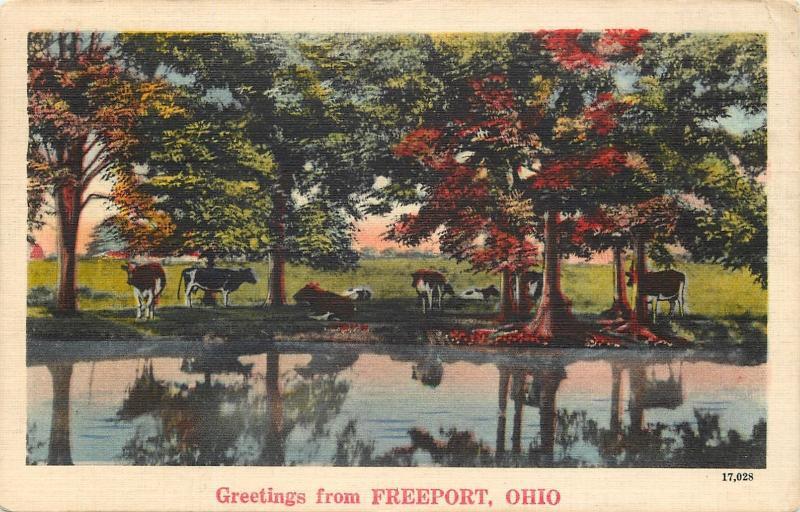 Freeport ohio greetingscows along creekshade trees1946 linen freeport ohio greetingscows along creekshade trees1946 linen postcard m4hsunfo