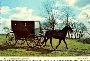 Indiana Nappanee Amish Traditional Transportation Horse and Buggy