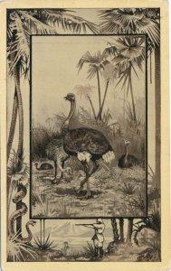 Africa Safari 1909 Series by Mintz of Chicago - Bird Ostrich - DB