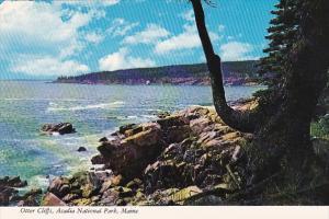 Otter Cliffs Acadia National Park Miaine