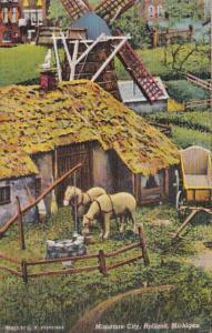 Michigan Holland Scene In Miniature City 1949 Curteich