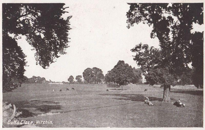 Butts Close Hitchin Antique Hertfordshire Postcard