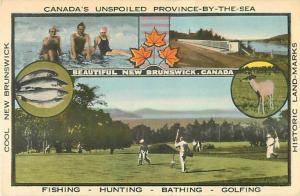 Cool New Brunswick Advertising Postcard NB Canada White Border