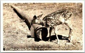 Lassen Volcanic National Park CA RPPC Photo Postcard Deer / Milk Bottle c1940s
