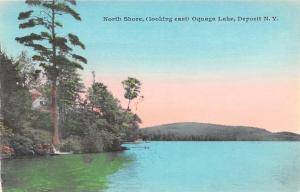 Deposit New York~Oquaga Lake North Shore~Looking East~1908 Handcolored Postcard