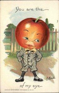 TUCK Fantasy Apple Head Boy THE GARDEN PATCH c1910 Postcard E. Curtis